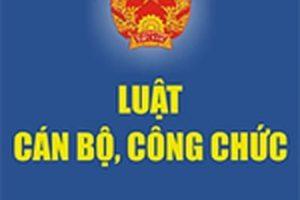 Đề cương tuyên truyền Luật cán bộ, công chức, Luật viên chức sửa đổi 2019
