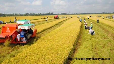 Xác định diện tích đất nông nghiệp để hỗ trợ khi nhà nước thu hồi đất