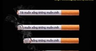 Xử phạt vi phạm hành chính lĩnh vực kinh doanh thuốc lá