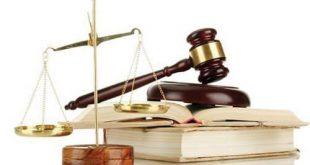Mẫu báo cáo công tác theo dõi thi hành pháp luật